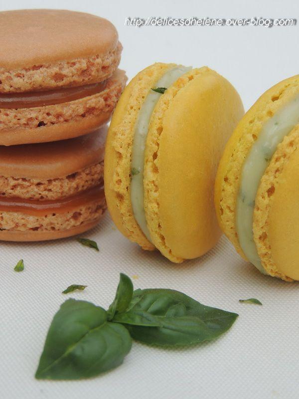 macarons citron vert basilic et macarons caramel beurre salé