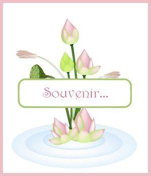 free du lundi - lotus - 2