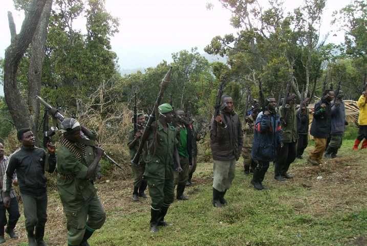 Rwanda :Bamwe mubitandukanyije na FDLR bashinze umutwe mushya witwa CNRD-UBWIYUNGE.