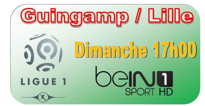 [Dim 08 Mar] Ligue 1 (J28) : Guingamp / Lille (17h00) en direct sur beIN SPORTS 1 !