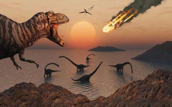 Les espèces disparaissent 10 fois plus vite que prévu