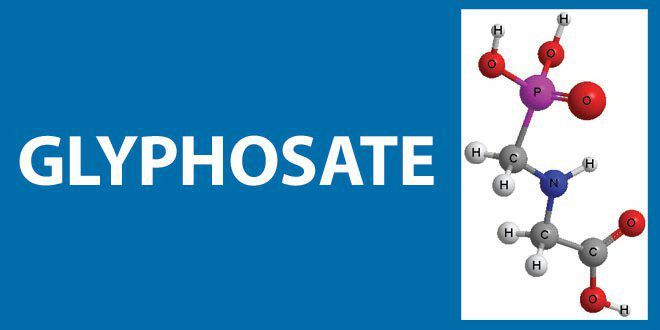 Tout savoir sur le Glyphosate, l'herbicide le plus vendu au monde