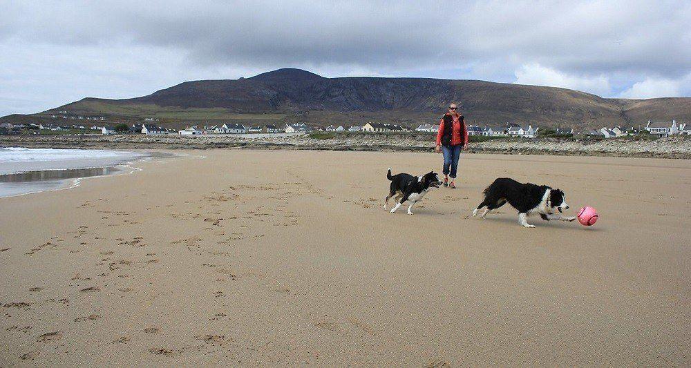 Cette plage irlandaise a été balayée par une tempête il y a plus de trente et est réapparue c - Sean Molloy/Archill Tourism