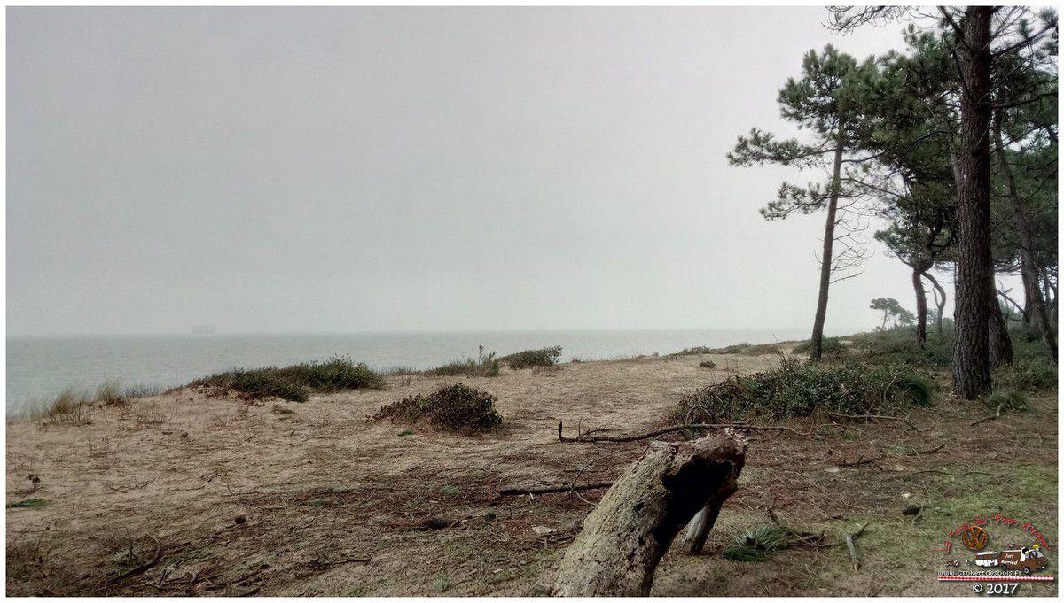 Première escapade en combi de 2017... Direction l'Ile d'Oléron !