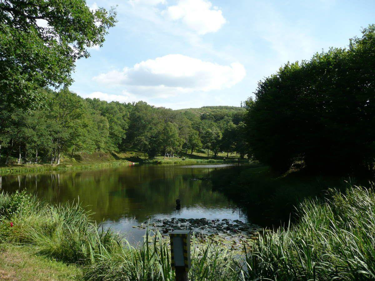 Autour de l'étang en 2011