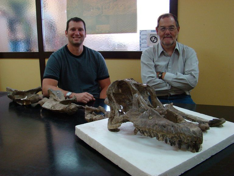 Sarmientosaurus Was a 10-Ton Dinosaur With a Plum-Sized Brain