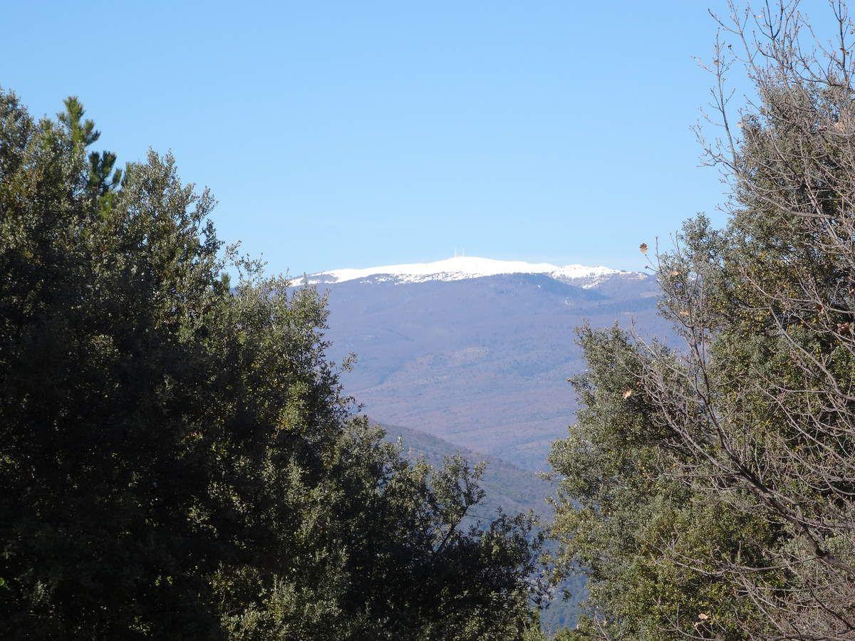 Week-end VTT aux Mées (Alpes de Haute Provence) 20 et 21 février 2016