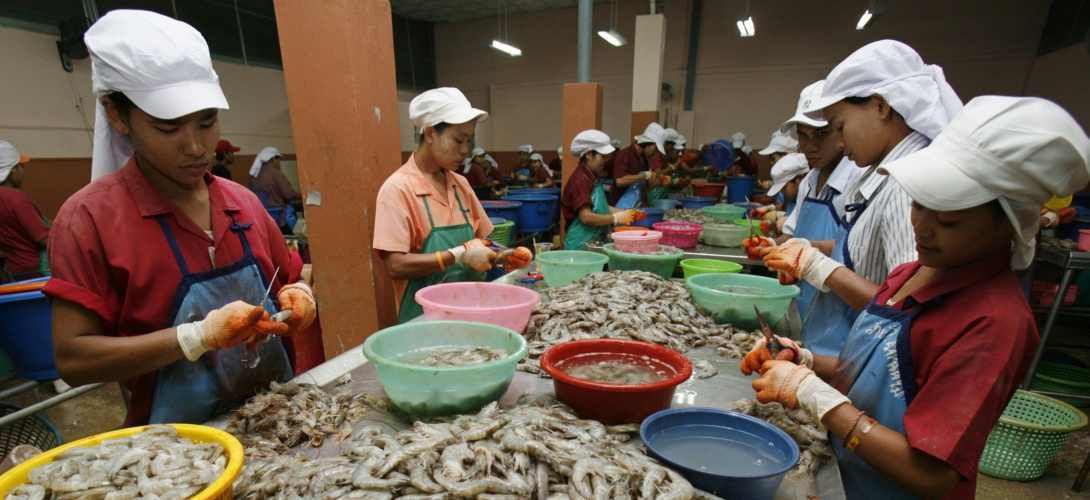 Vous mangez peut-être des crevettes nourries par le travail d'esclaves
