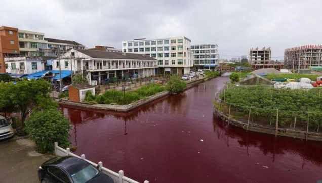 Chine : Une rivière vire au rouge-sang