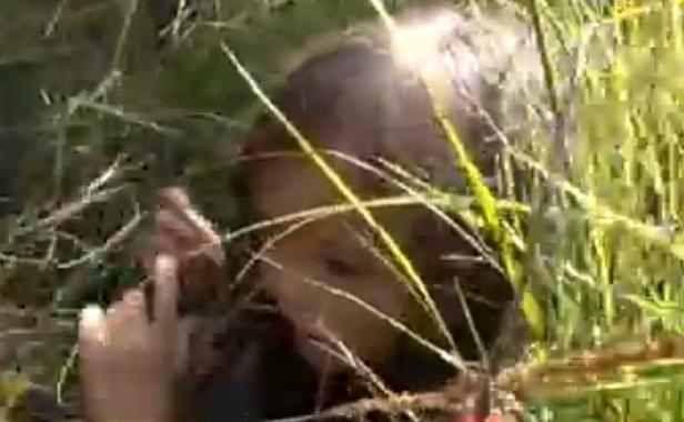 VIDEO: Une fillette survit 11 jours seule dans une foret froide en Sibérie