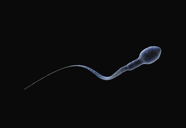 5 questions que vous vous posez sur le sperme