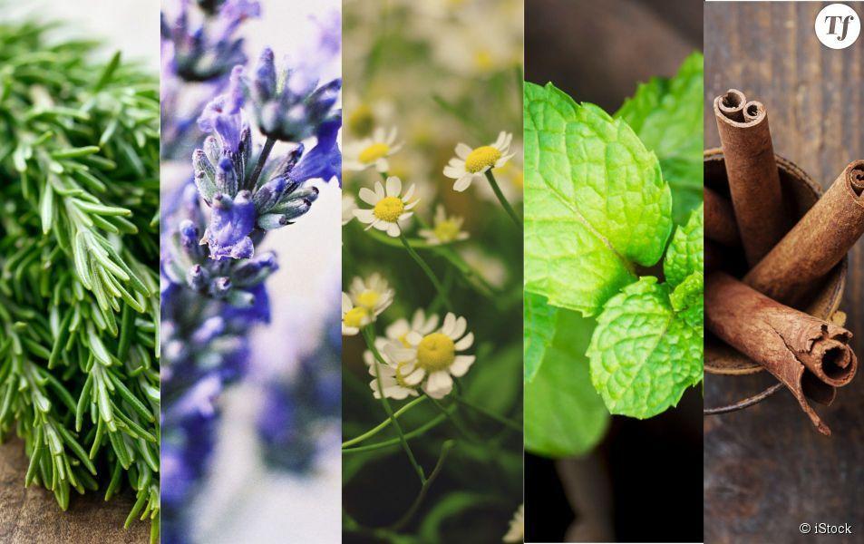 5 traitements naturels contre la migraine
