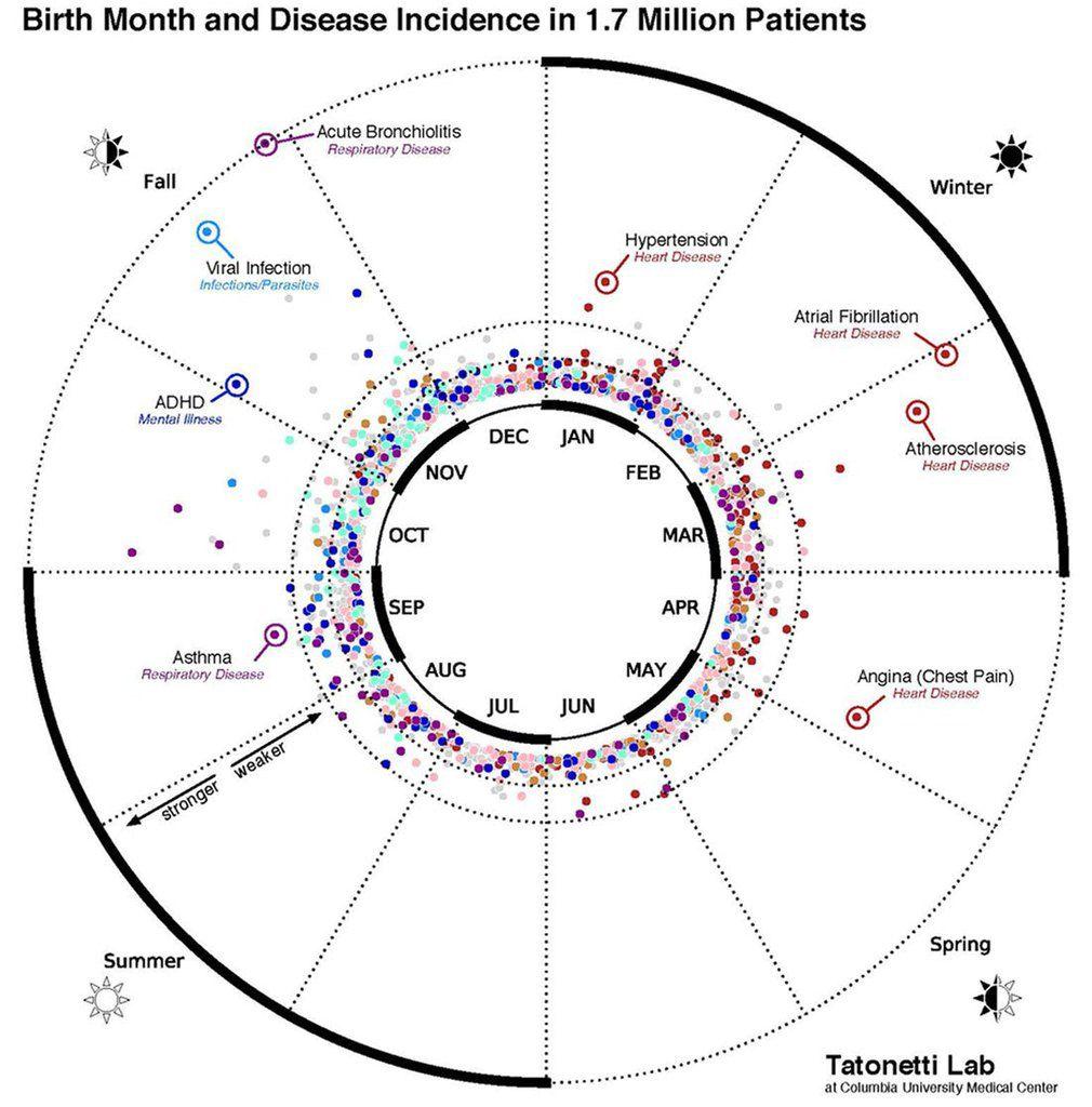 Votre mois de naissance peut prédire de quelle maladie vous allez souffrir