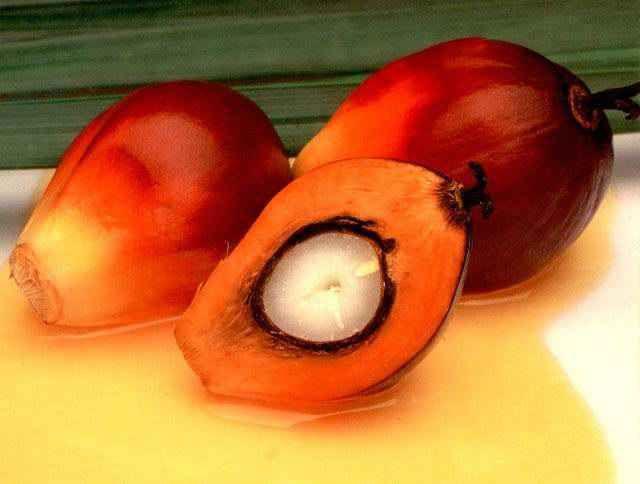 Vérités et mensonges sur l'huile de palme