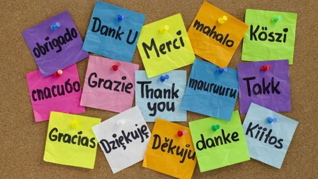 5 conseils pour devenir bilingue