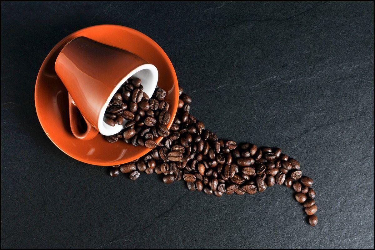 11 astuces et recettes économiques et écologiques pour réutiliser le marc de café dans la maison et le jardin