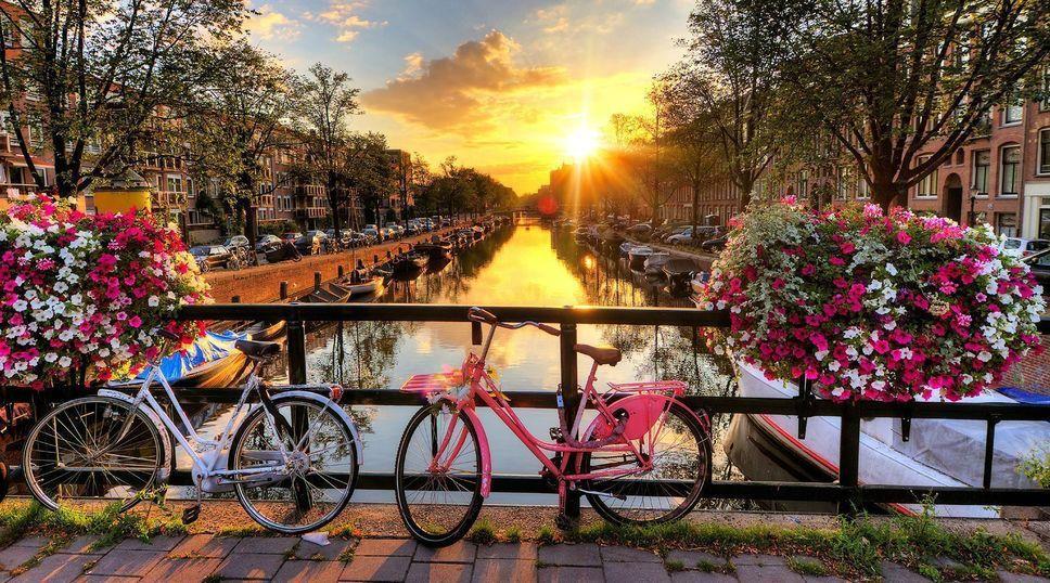 5 raisons de visiter les Pays-Bas au printemps
