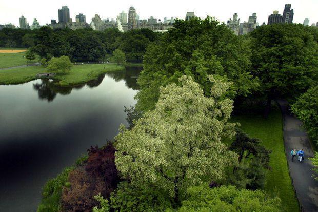 Une portion secrète de Central Park rouverte au public après 80 ans