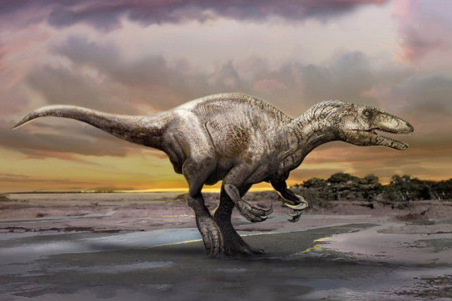 Découverte d'une nouvelle espèce de dinosaure en Argentine