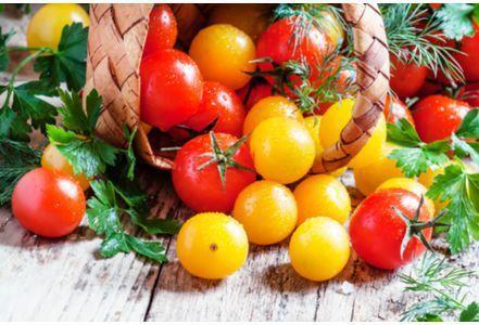 Comment choisir cuisiner et conserver les tomates - Cuisiner les tomates sechees ...
