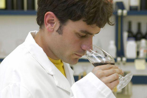 Le vin sans raisin, dernière invention à la mode dans la Silicon Valley