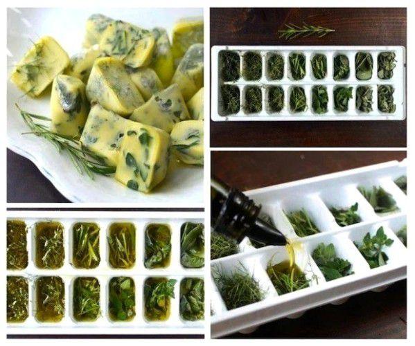 Créez vos cubes cuisson vous même en surgelant des herbes aromatiques et de l'huile d'olive!