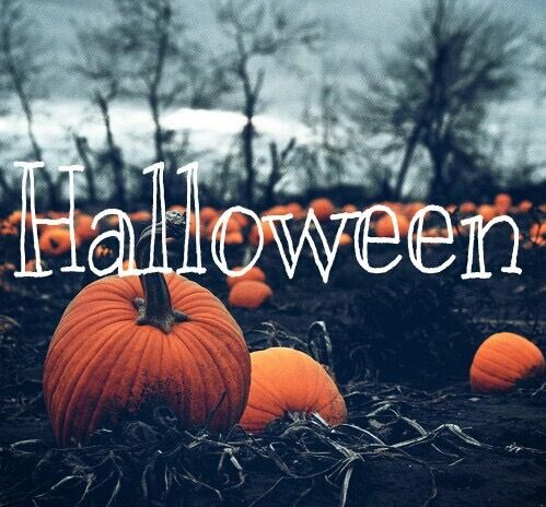 Get ready for.... HALLOWEEN !