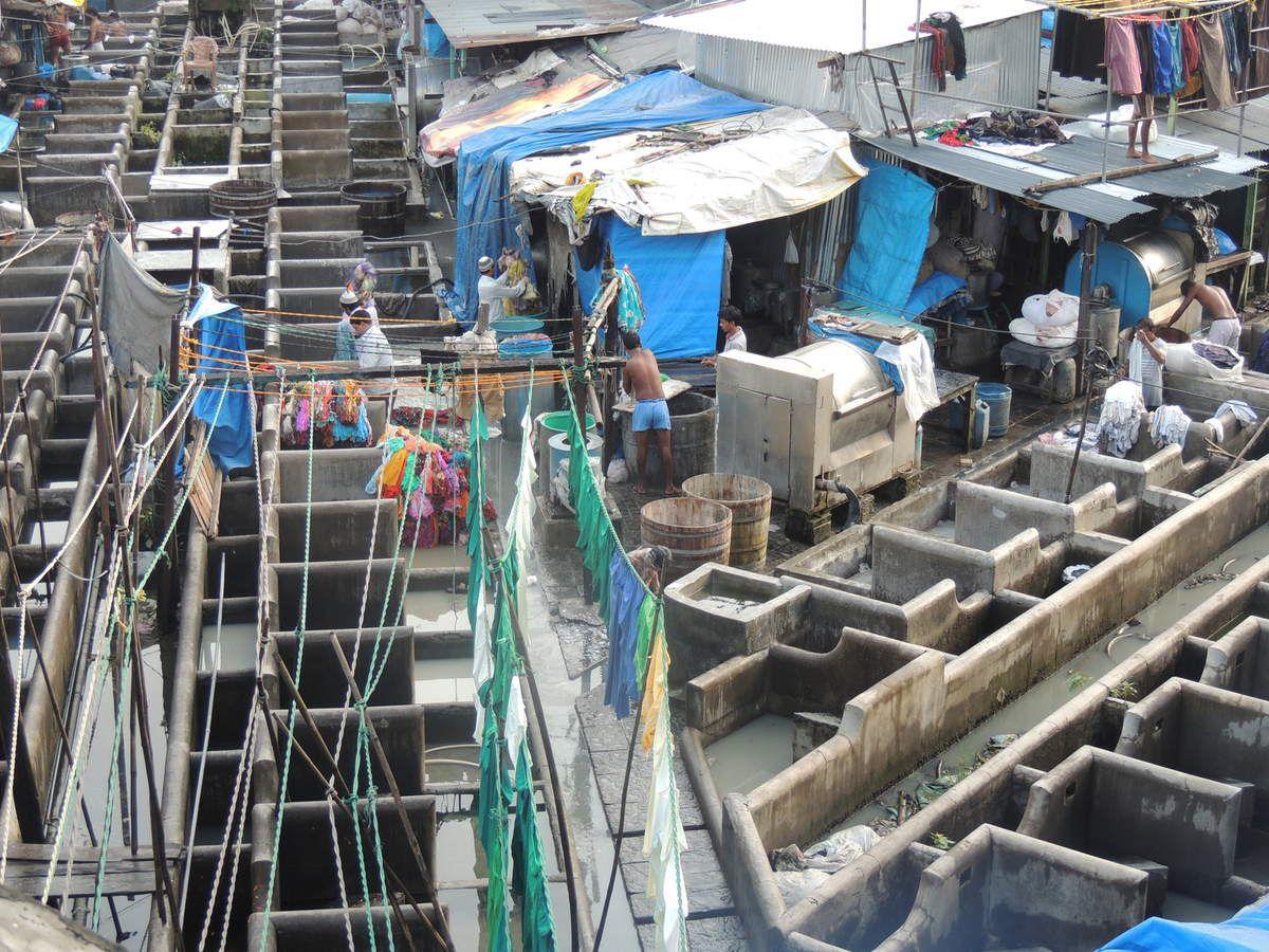 Les Dhobis wallah s'activent à Dhobi Ghat