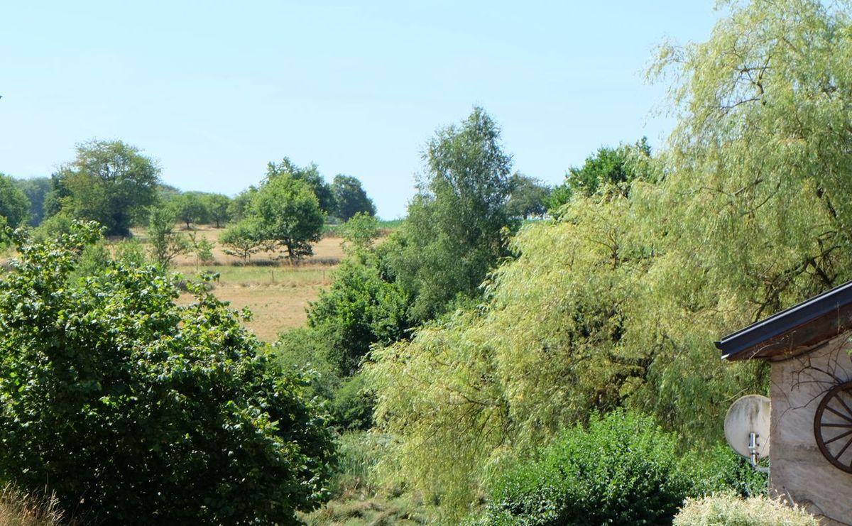 Location Chalets en Bois Cordé