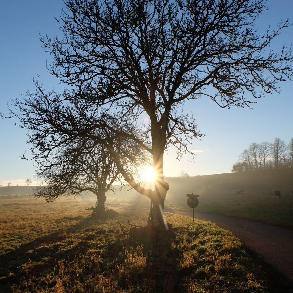 Enorme soleil mercredi matin à la Grande Fosse. Photos lesvoivres88240