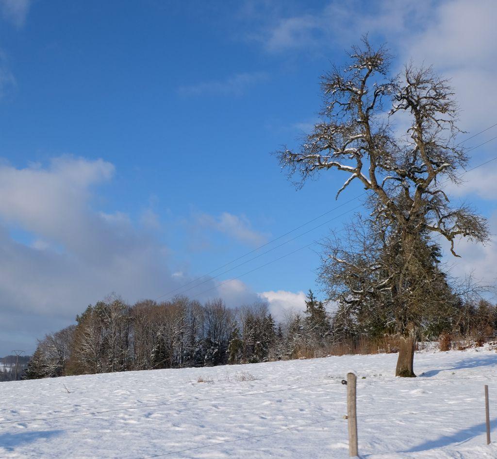 Les Voivres sous la neige