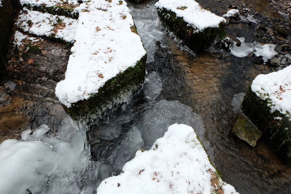 Le Ruisseau des Ecrevisses avait pris froid