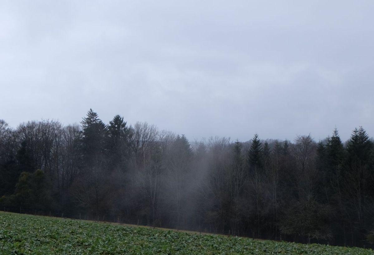 Bancs de brume autour de la Chapelle de Bonne Espérance