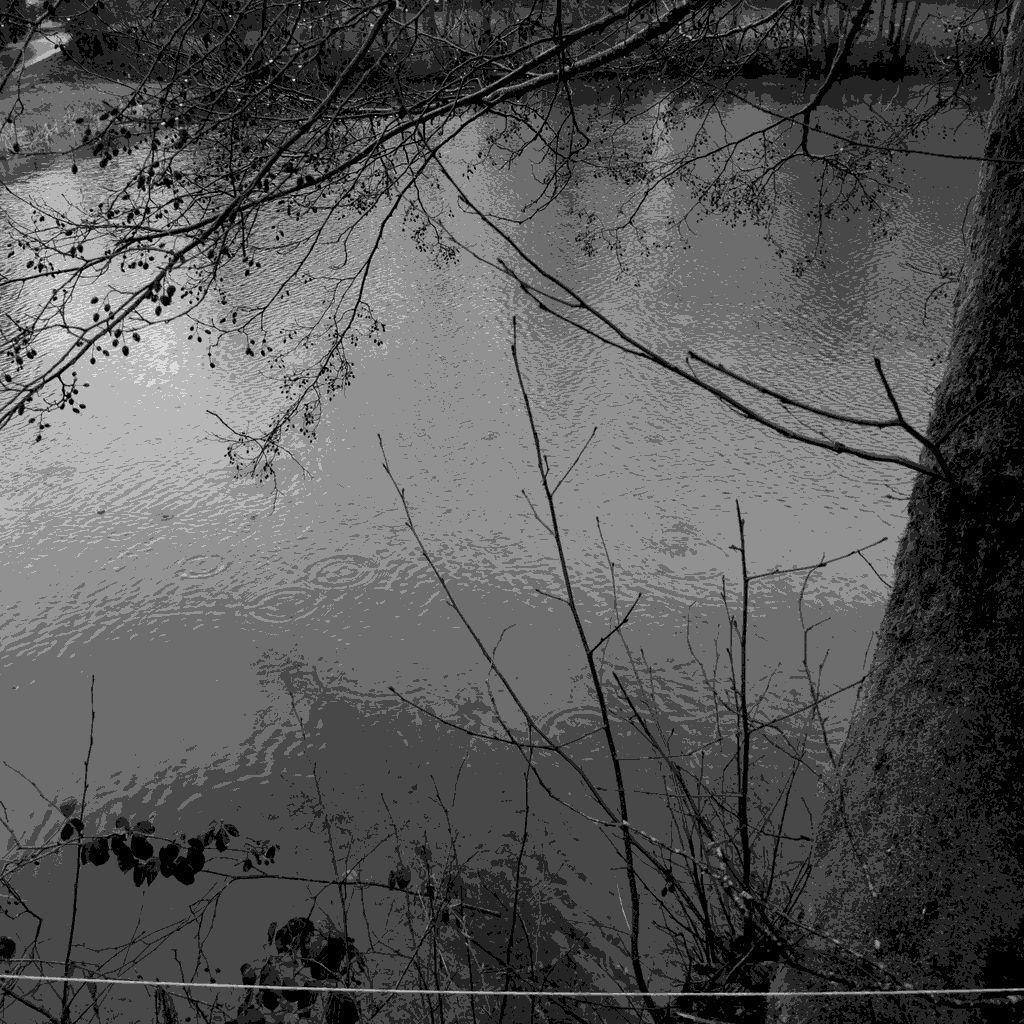 L'étang sous la pluie