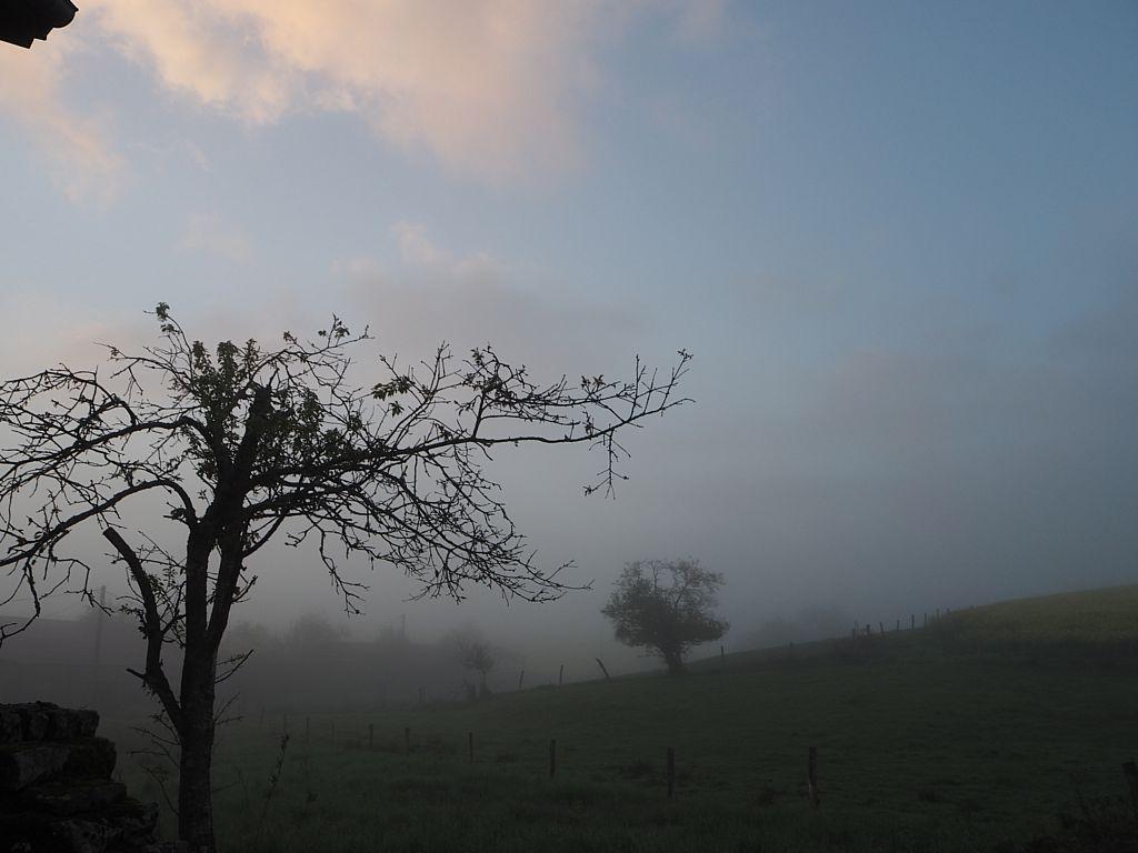 Les brumes matinales s'élèvent à la Basse des Orges