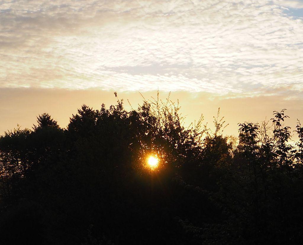 Soleil levant à la Basse des Orges
