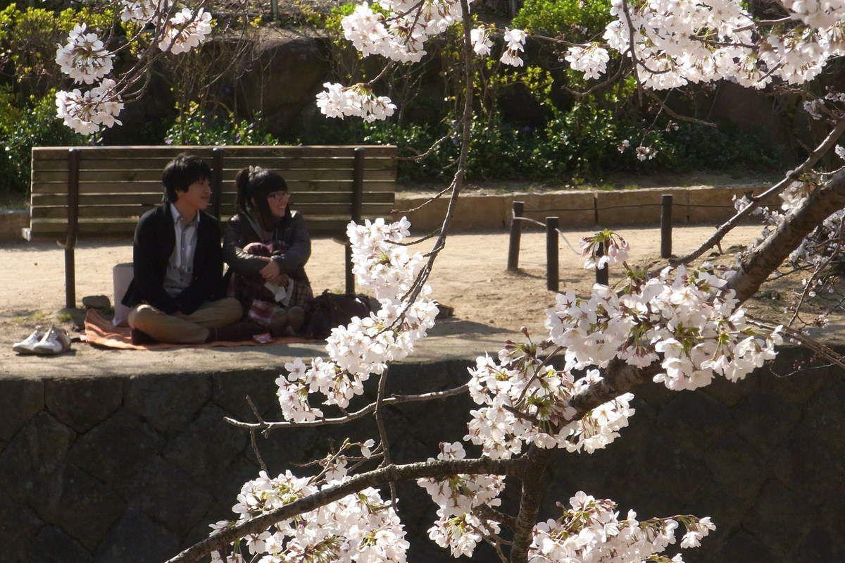 Un jeune couple. Ils sont restés assis là une bonne heure peut-être et c'est à peine si leurs épaules se sont frôlées, sans un baiser, pas même une accolade ! Assis par terre sur leur bâche de plastique à côté d'un banc... vide ! Parce que pour beaucoup c'est comme ça le Hanami, par terre sur une bâche (Goza) et il ne peut en être autrement ! Notez qu'ils ont bien retiré leurs chaussures et les ont soigneusement alignées. Au Japon, il se doit de retirer ses chaussures, non seulement lorsqu'on entre dans une maison, mais aussi avant d'occuper un espace où l'on s'asseoit. Les SDF le font également lorsqu'ils se couchent sur un banc. Mes respects.