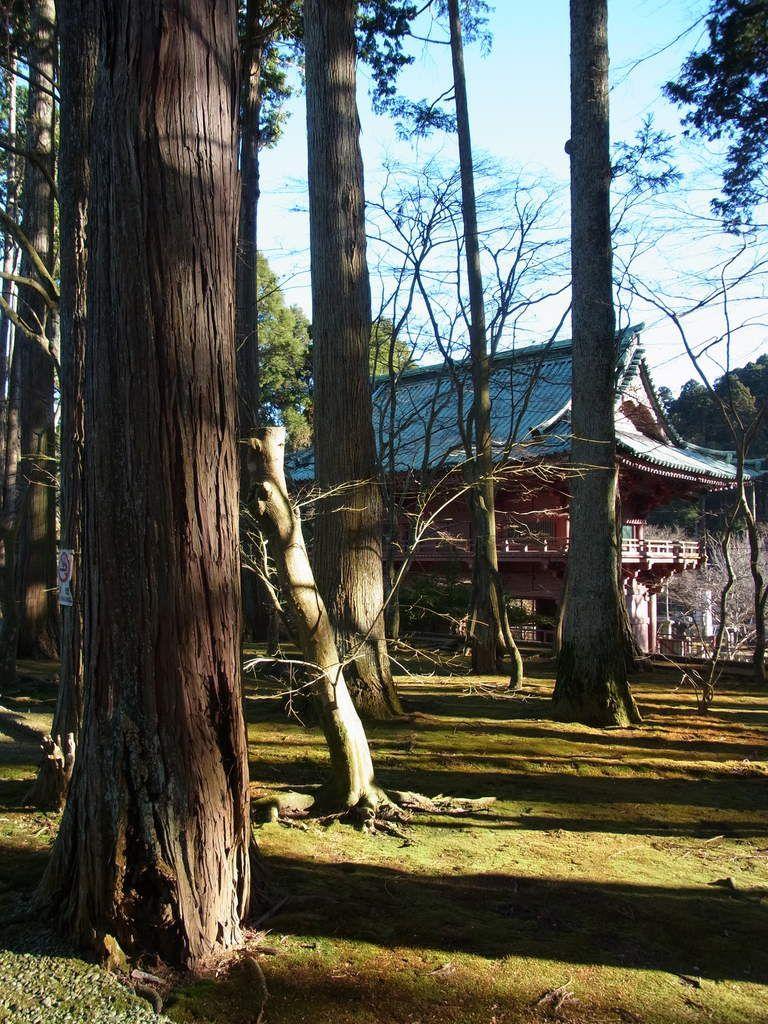 Préf. de Chiba : Le Mt Kanô 神野山, pour un &quot&#x3B;drive&quot&#x3B; au coeur de la péninsule de Bôsö