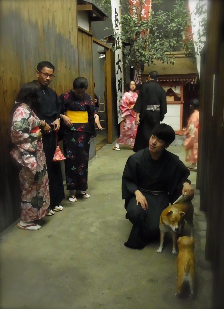 Les chiens sont, bien sûr, des faux, ainsi que les Japonais (ce sont, en  majeure partie, des Chinois)!