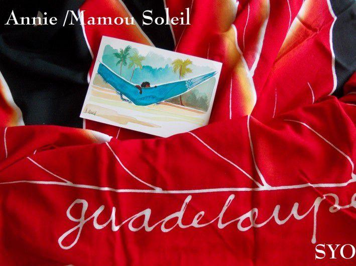 Le superbe cadeau d' Annie / Mamou Soleil