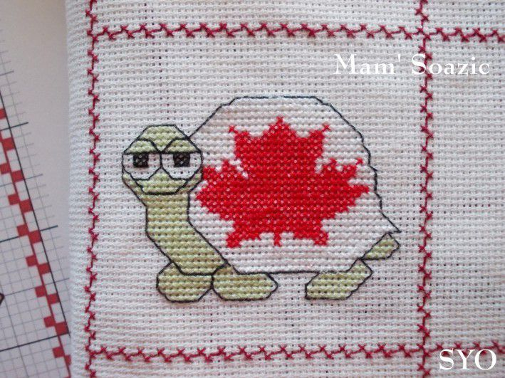 Plaid aux Tortues : Tortue Canada