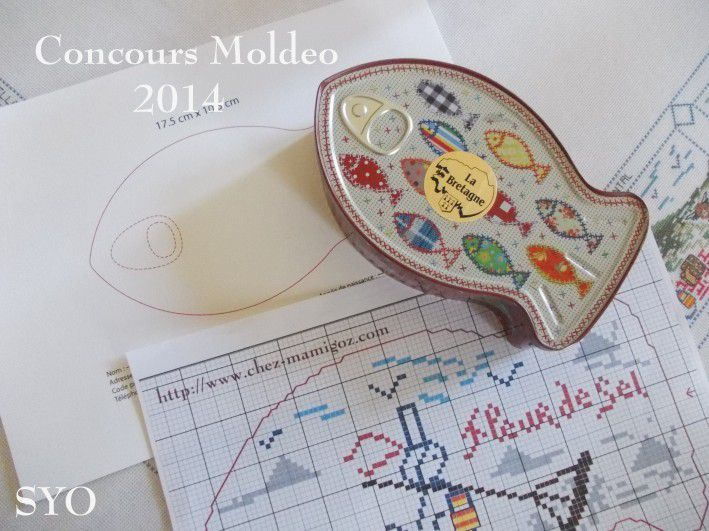 Concours Moldeo 2014 : ma participation