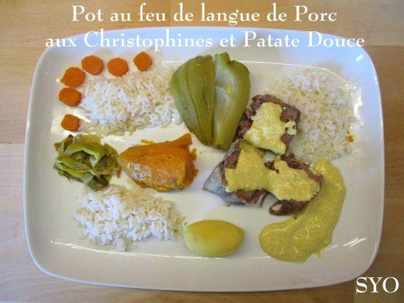 Pot-au-feu de Langue de Porc crémé au Curry, Christophines, patates douces et ses dérivés