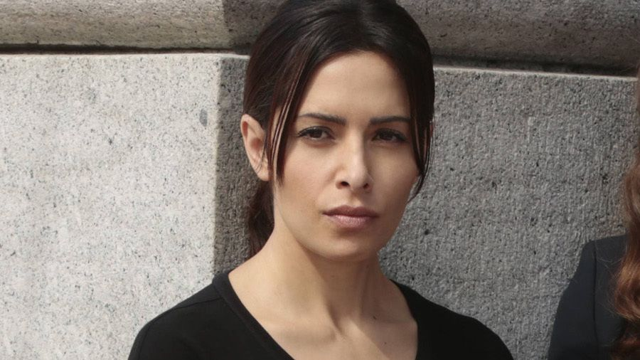 Sarah Shahi (&quot&#x3B;Person of Interest&quot&#x3B;) décroche le premier rôle de &quot&#x3B;Nancy Drew&quot&#x3B; pour CBS aux côtés de Anthony Edwards (&quot&#x3B;Urgences&quot&#x3B;) et Vanessa Ferlito (&quot&#x3B;Graceland&quot&#x3B;)