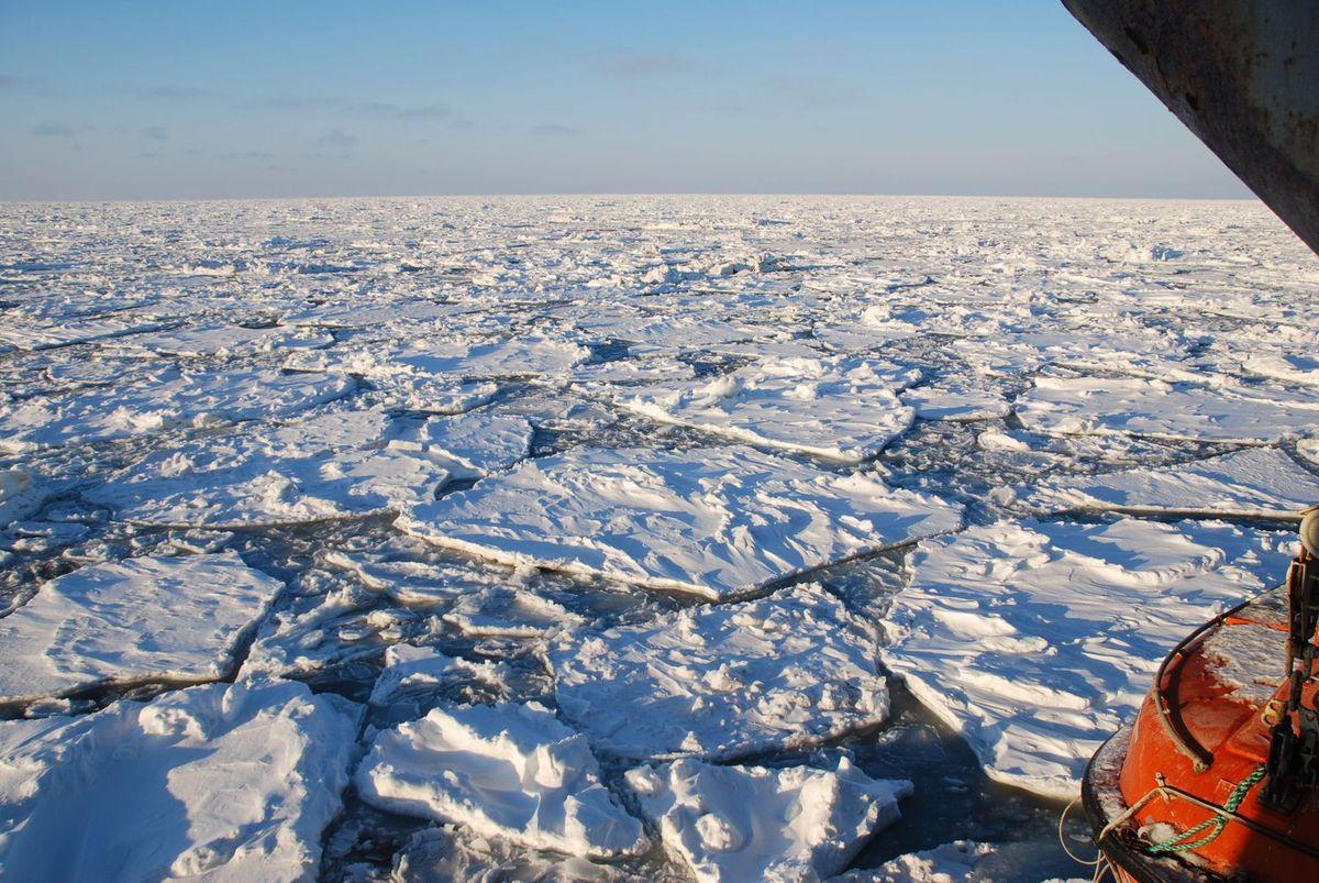 Les glaces de la banquise arctique polluées par du plastique
