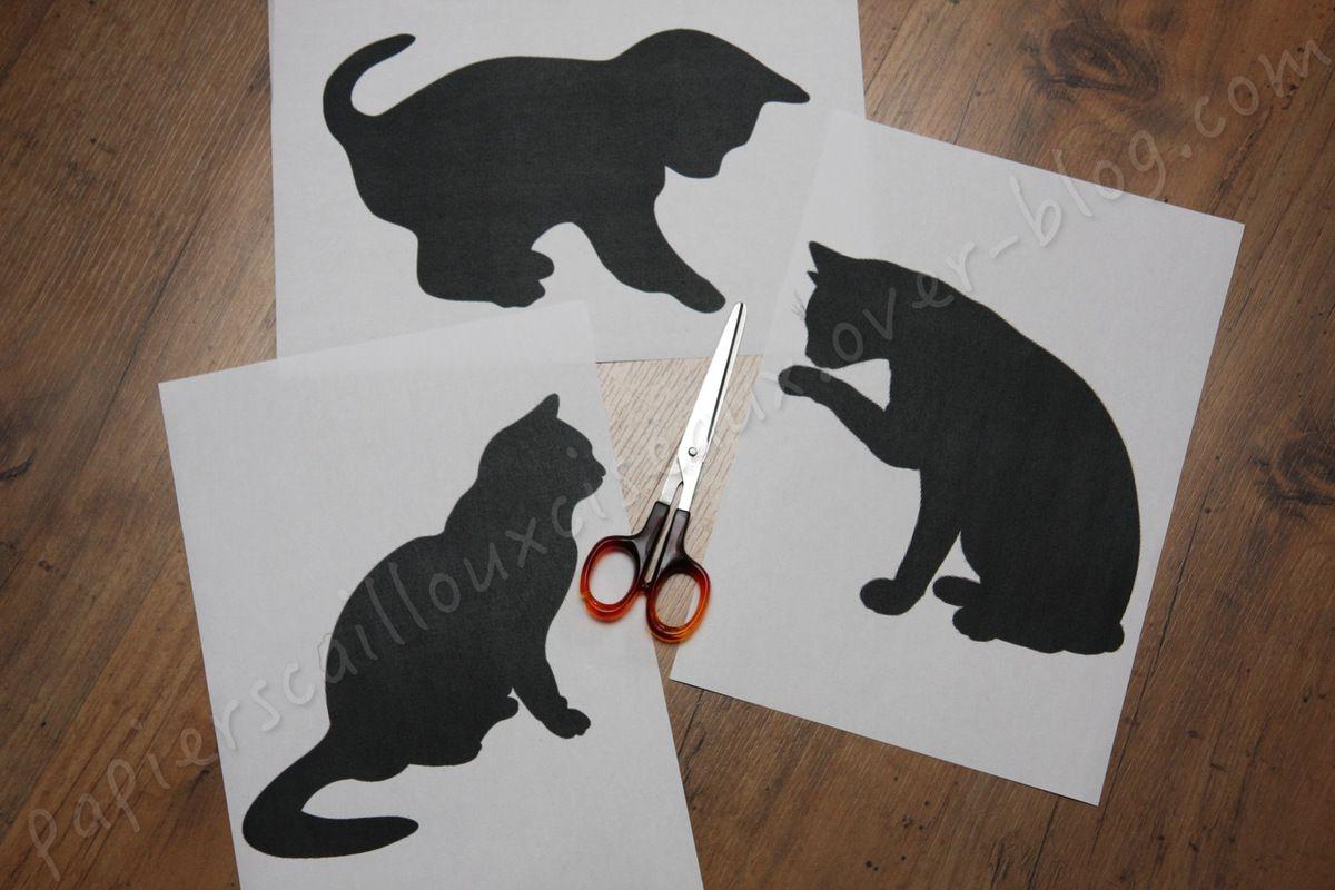 Les chats patchwork