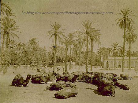 Images très anciennes de Laghouat(période 1870-80).