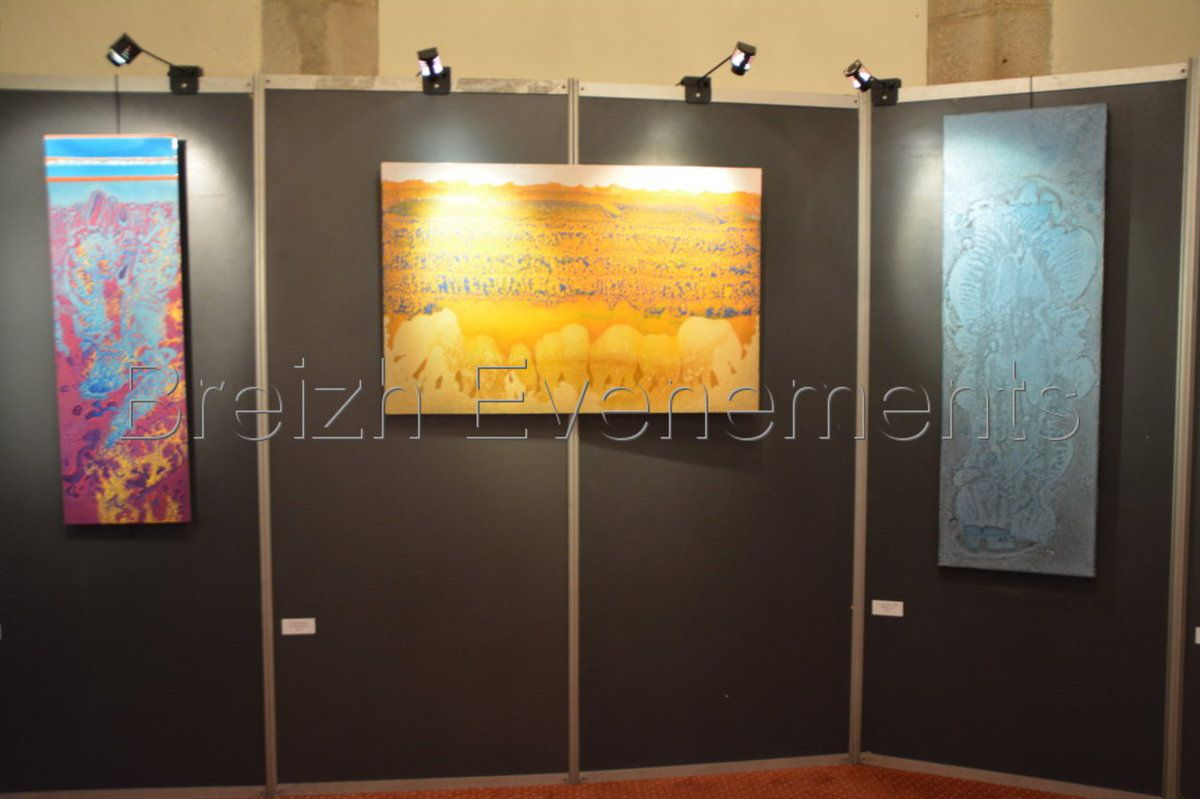 EXPOSITION TOM TOGOL EN IMAGES