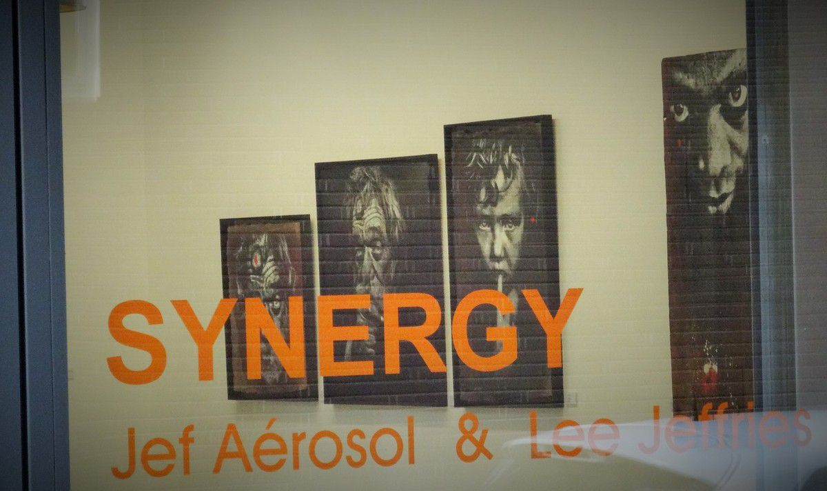 """Expo """"Synergie"""" de Jef Aérosol & Lee Jeffries à la galerie Mathgoth"""