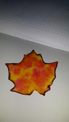 Feuille automne 5